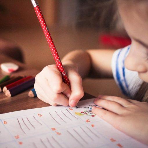 Empatia w Edukacji – Inkubatory Porozumienia